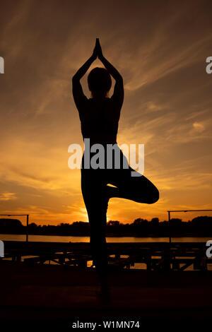 Woman practicing yoga in sunset. Vriksasana, Tree pose - Stock Photo