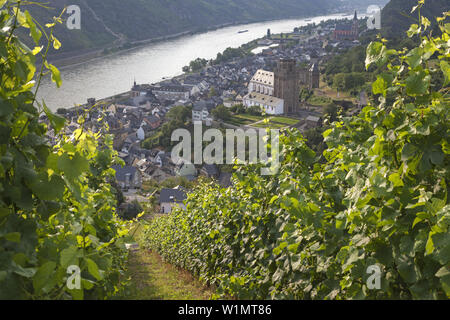 View over the vineyards at Oberwesel and the Rhine, Upper Middle Rhine Valley, Rheinland-Palatinate, Germany, Europe - Stock Photo