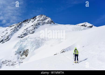 Woman back-country skiing ascending towards Pizzo Tresero, Pizzo Tresero, Val dei Forni, Ortler range, Lombardy, Italy - Stock Photo