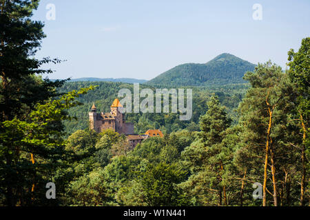 Burg Berwartstein Castle, Erlenbach, Palatinate Forest, Palatinate, Rhineland-Palatinate, Germany - Stock Photo