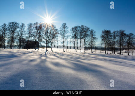 Winterscenery near Uffing at lake Staffelsee, Upper Bavaria, Alps, Germany - Stock Photo