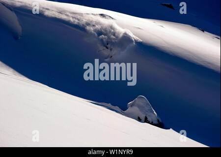 Skier in deep snow, Hochfugen, Fugenberg, Zillertal, Tyrol, Austria - Stock Photo
