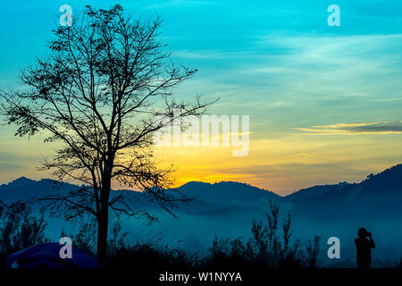 Tourists photograph the sunrise behind the mountains and the tree. - Stock Photo
