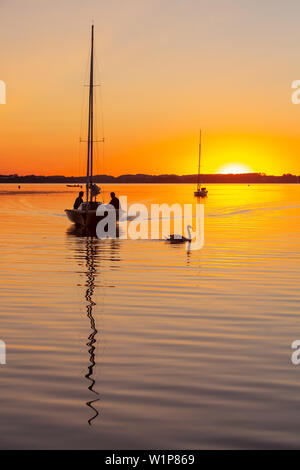 Sailboats and swan in the last evening light at the Chiemsee, in the background the islands on the horizon - Stock Photo