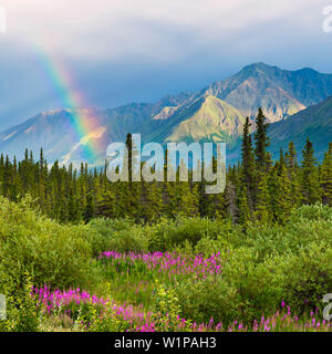 rainbow above the forest of Kluane Lake, Yukon Territory, Canada - Stock Photo