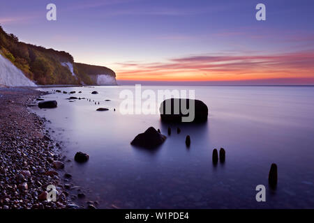 Morning mood at the chalk rocks, Jasmund National Park, Ruegen, Baltic Sea, Mecklenburg-West Pomerania, Germany - Stock Photo