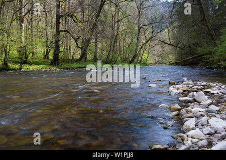 Wutach Gorge, Black forest, Baden-Württemberg, Germany - Stock Photo
