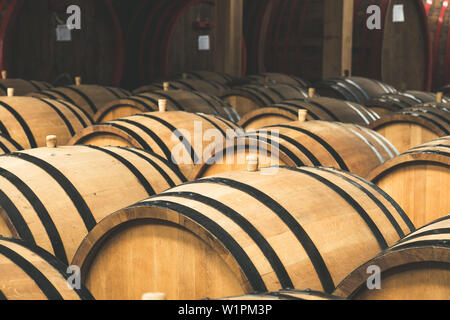 Oak barrels in the cellar filled with brandy - Stock Photo