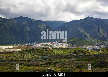 View from Puertito de los Silos across luxuriant vegetation at La Tierra del Trigo, Tenerife, Canary Islands, Islas Canarias, Atlantic Ocean, Spain, E - Stock Photo