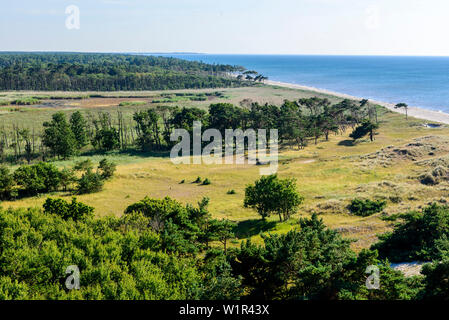 View from the lighthouse, Darsser Ort with lighthouse and Natureum, Ostseeküste, Mecklenburg-Western Pomerania, Germany - Stock Photo