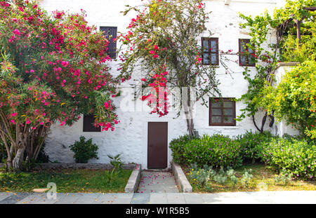 Traditional Aegean style white houses, colorful streets and bougainvillea flowers in Bodrum city of Turkey. White colored architecture in Bodrum town
