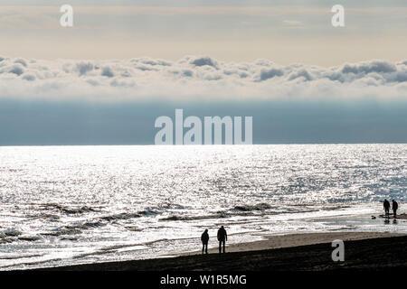 Beach walker after sunrise, Wangerooge, East Frisia, Lower Saxony, Germany - Stock Photo