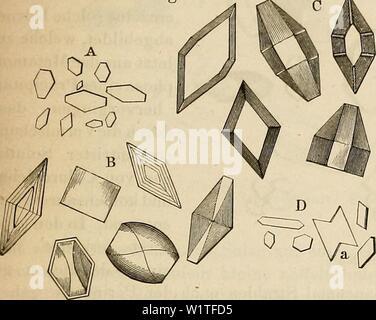 Archive image from page 480 of Das mikroskop Theorie, gebrauch, geschichte - Stock Photo