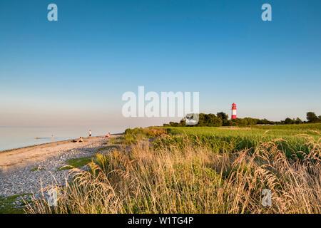 Falshoeft Lighthouse, Falshoeft, Angeln, Baltic coast, Schleswig-Holstein, Germany - Stock Photo