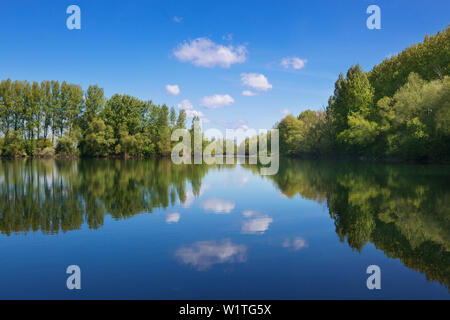 Old arm of the Rhine river, Bislicher Insel, near Xanten, Lower Rhine, North-Rhine Westphalia, Germany - Stock Photo