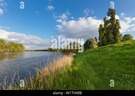 Birtener Altrhein, old arm of the Rhine river, near Xanten, Lower Rhine, North-Rhine Westphalia, Germany - Stock Photo