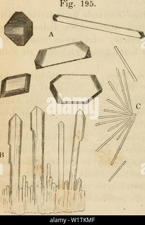 Archive image from page 491 of Das mikroskop Theorie, gebrauch, geschichte - Stock Photo