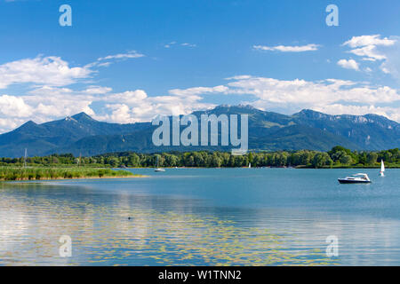 Boats on the summer Lake Chiemsee, in the foreground water lilies and reeds, the Chiemgau mountains in the background - Stock Photo