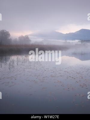 morning mood on the Lake Turnersee, Carinthia, Austria - Stock Photo