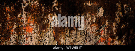 surface of the old sheet metal covered with corrosion and rust. Web banner. - Stock Photo