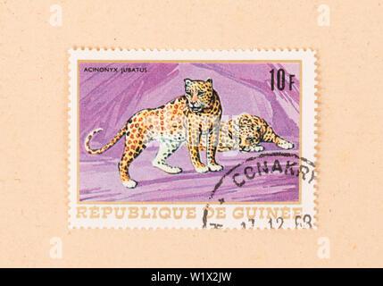 PAPUA NEW GUINEA - CIRCA 1980: A stamp printed in Papua New Guinea shows a cheetah, circa 1980 - Stock Photo