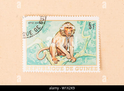 PAPUA NEW GUINEA - CIRCA 1980: A stamp printed in Papua New Guinea shows a monkey, circa 1980 - Stock Photo