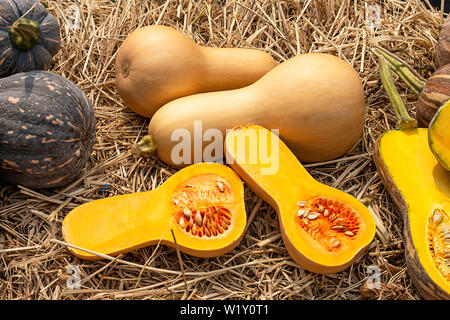 Pumpkin is cut into pieces on the straw. - Stock Photo