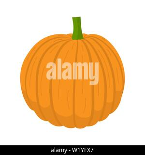 Fresh orange pumpkin vegetable isolated on white background. Pumpkin icon for market, recipe design. Organic food. Cartoon style. Clean and modern vec - Stock Photo