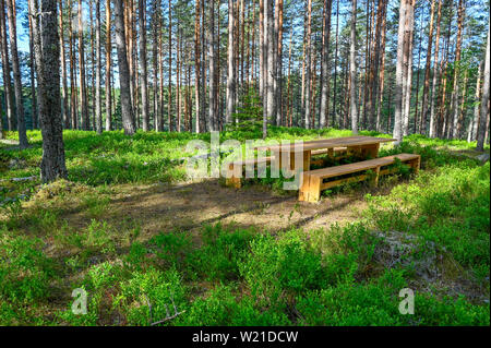 resting area table and bench in a Swedish forest