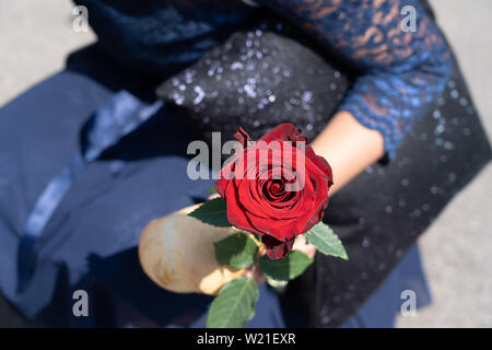 Red Rose and piece of bread in hand of a kneeling young girl, in dark blue glittering dress after school graduation at Jugendfest Brugg. Close up. - Stock Photo