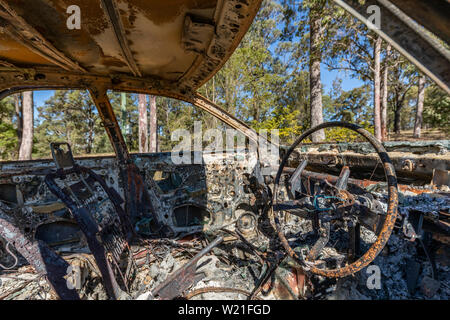 interior of Burnt out car and view to forest - Stock Photo