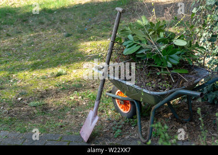 Wheelbarrow filled with leaves and branches with a fanned spade after gardening in spring, gardening - Stock Photo