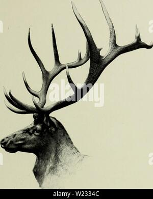 Archive image from page 128 of The deer of all lands; - Stock Photo