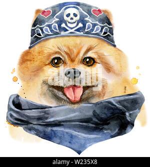 Cute Dog. Dog T-shirt graphics. watercolor pomeranian spitz illustration - Stock Photo