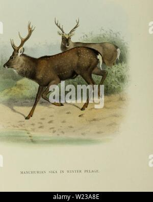 Archive image from page 147 of The deer of all lands; - Stock Photo