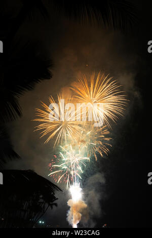 Fourth of July Fireworks Display over the ocean, with palm tree silhouettes framing - Stock Photo