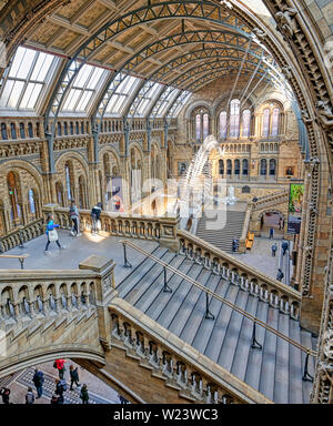 London, United Kingdom - April 17, 2019 - The interior of Natural History Museum and and whale skeleton in London, United Kingdom. - Stock Photo