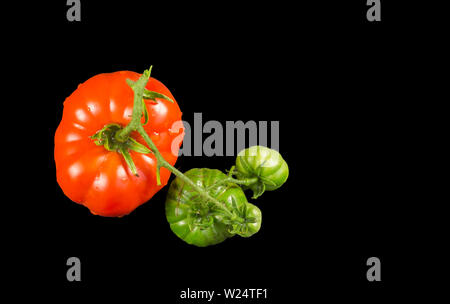 Oxheart tomato is a large beefsteak type tomato, resembling an ox heart, which is a sweet red fruit low in seeds, on a black background - Stock Photo