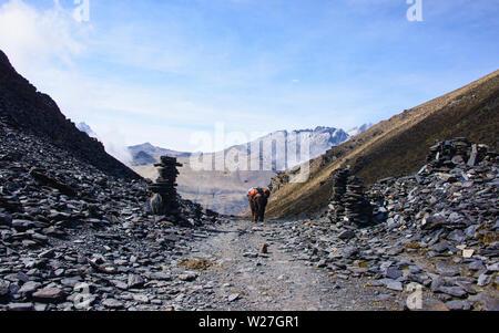 Horse trekking at the Cordillera Real mountain range, Bolivia - Stock Photo