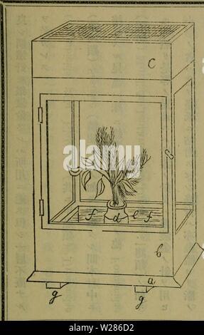 Archive image from page 370 of Dbutsugaku zasshi (1889) - Stock Photo