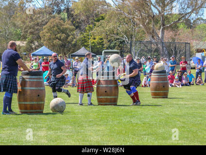 Highland games competition at Canberra Burns Club Highland gathering - Stock Photo