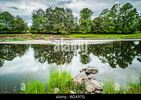 Mertoun, St. Boswells, Scottish Borders, UK. 5th July 2019. The River Tweed at Mertoun near St. Boswells on a humid and cloudy day in the Scottish Bor - Stock Photo