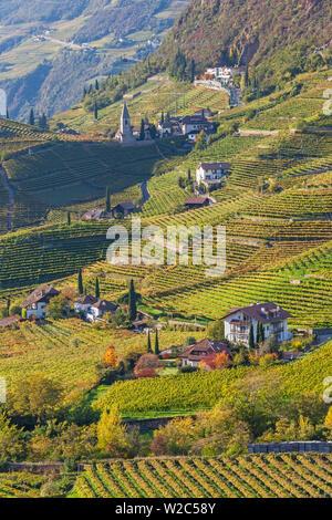 Vineyards near Bolzano, Trentino-Alto Adige/South Tirol, Italy - Stock Photo