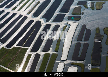Polder or re-claimed lands, North Holland, Netherlands - Stock Photo