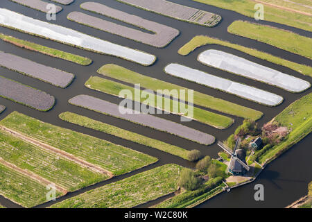Windmill & Polder or re-claimed lands, North Holland, Netherlands - Stock Photo