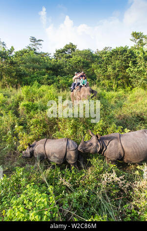Nepal, Pokara, Chitwan National Park, Tourists on elephant safari viewing   Rinos - Stock Photo