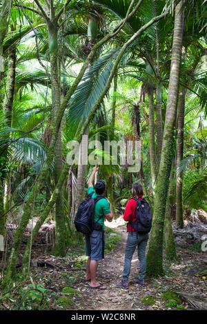 Couple walking the Heaphy Track, Karamea, West Coast, South Island, New Zealand - Stock Photo