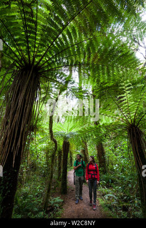 Couple walking in National Park, Karamea, West Coast, South Island, New Zealand - Stock Photo