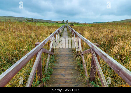 UK, Scotland, Argyll and Bute, Islay,  Loch Finlaggan, Boardwalk to Eilean Mor (Large Island), centre of the Lordship of the Isles and Clan Macdonald - Stock Photo