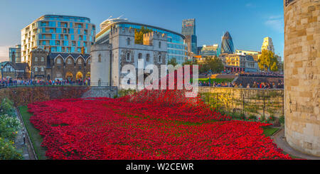 England, London, Tower of London, Blood Swept Lands and Seas of Red by ceramic artist Paul Cummins, with setting by stage designer Tom Piper, 888,246 ceramic poppies marking one hundred years since the first full day of Britain's involvement in the First World War - Stock Photo